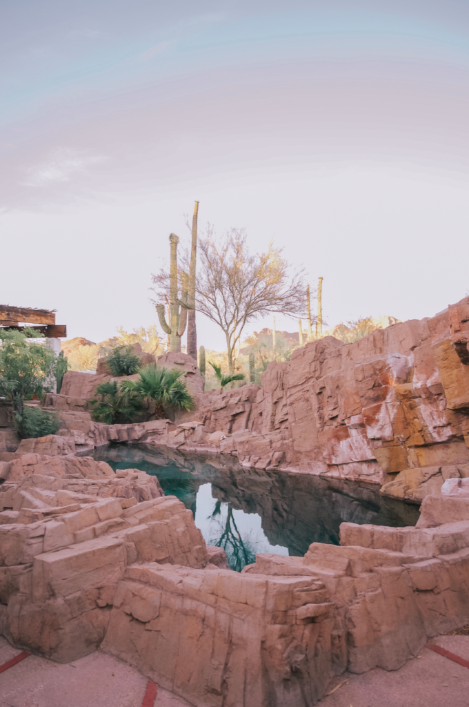 The Best Airbnb in Arizona
